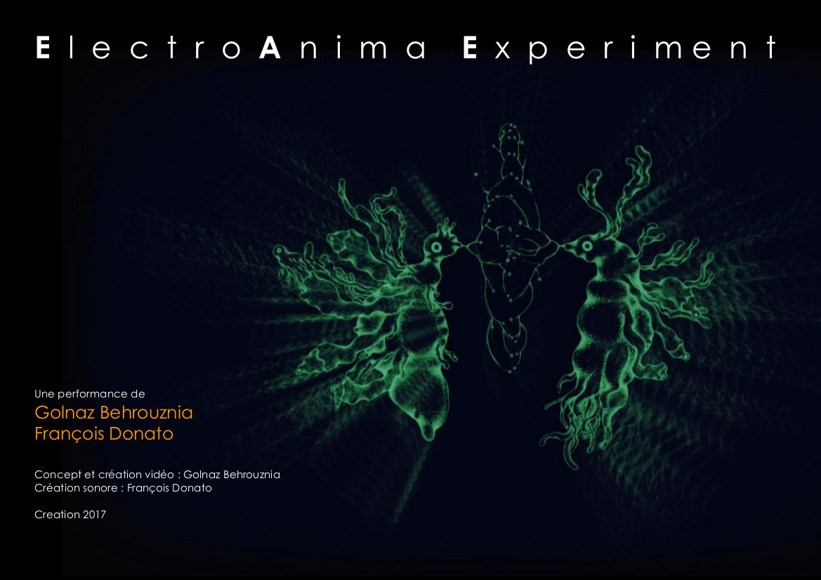 ElectroAnima Experiment @ Over The Real Festival